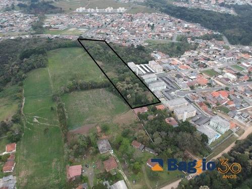 terreno - araucaria - centro - ref: 8401 - v-bg92148001