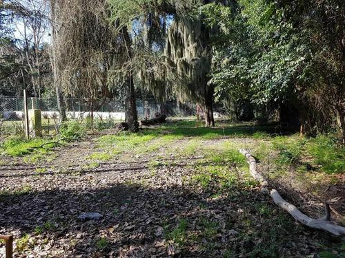 terreno arbolado en funes a 150mts de la ruta 9 (garita 15 bis)