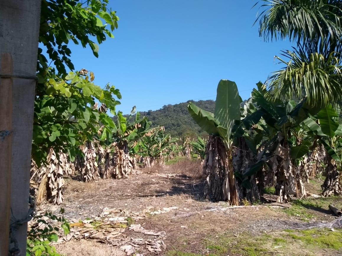 terreno área de chácara em mongaguá