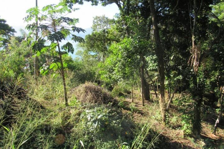 terreno área nobre ilhabela - sp - sao pedro - sp023