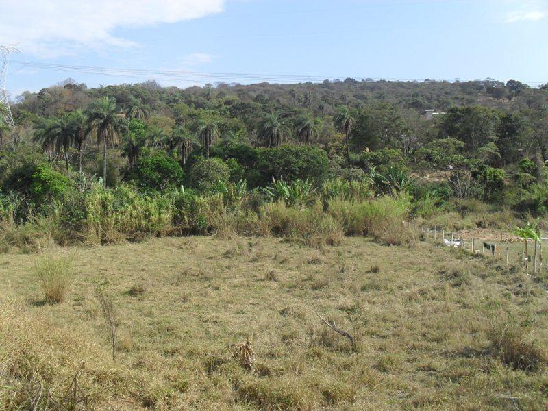 terreno / área para comprar no angico em vespasiano/mg - ec12143