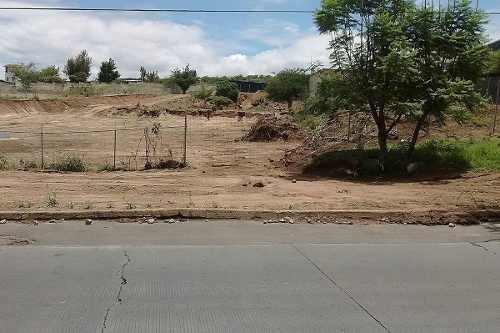 terreno av. pedro parra, tlajomulco