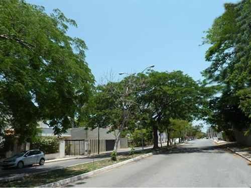 terreno avenida campestre