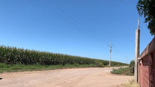 terreno - bachigualato