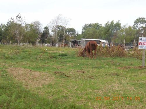 terreno  baldio apto para construir vivienda multifamiliar