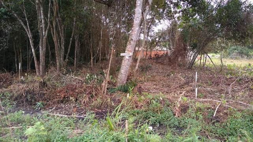 terreno barato, 300 metros da rodovia, em itanhaém-sp