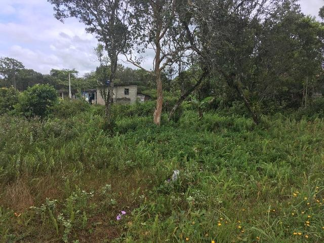 terreno barato a venda no jardim regina