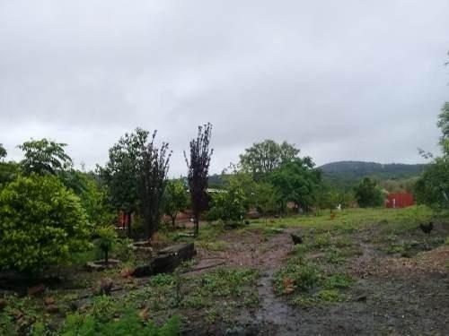 terreno bardeado con casa