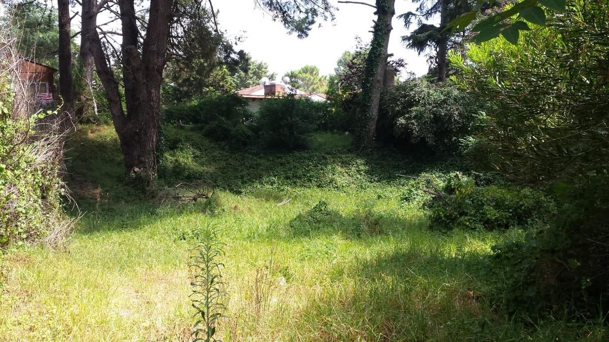 terreno barrio norte villa gesell 560m2 aproximados