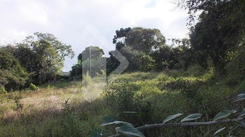 terreno - belem velho - ref: 193047 - v-193047