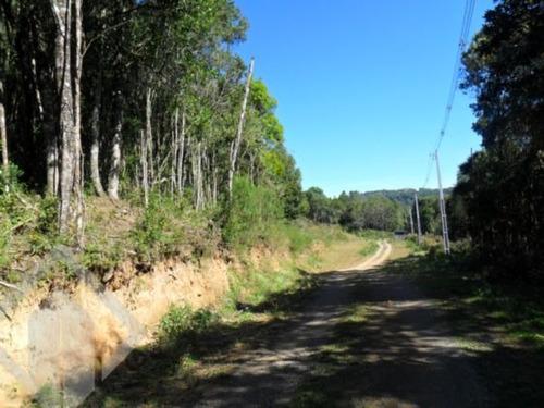 terreno - borgo - ref: 91469 - v-91469