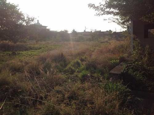 terreno bugambilias