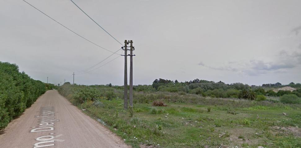 terreno - camino carrasco