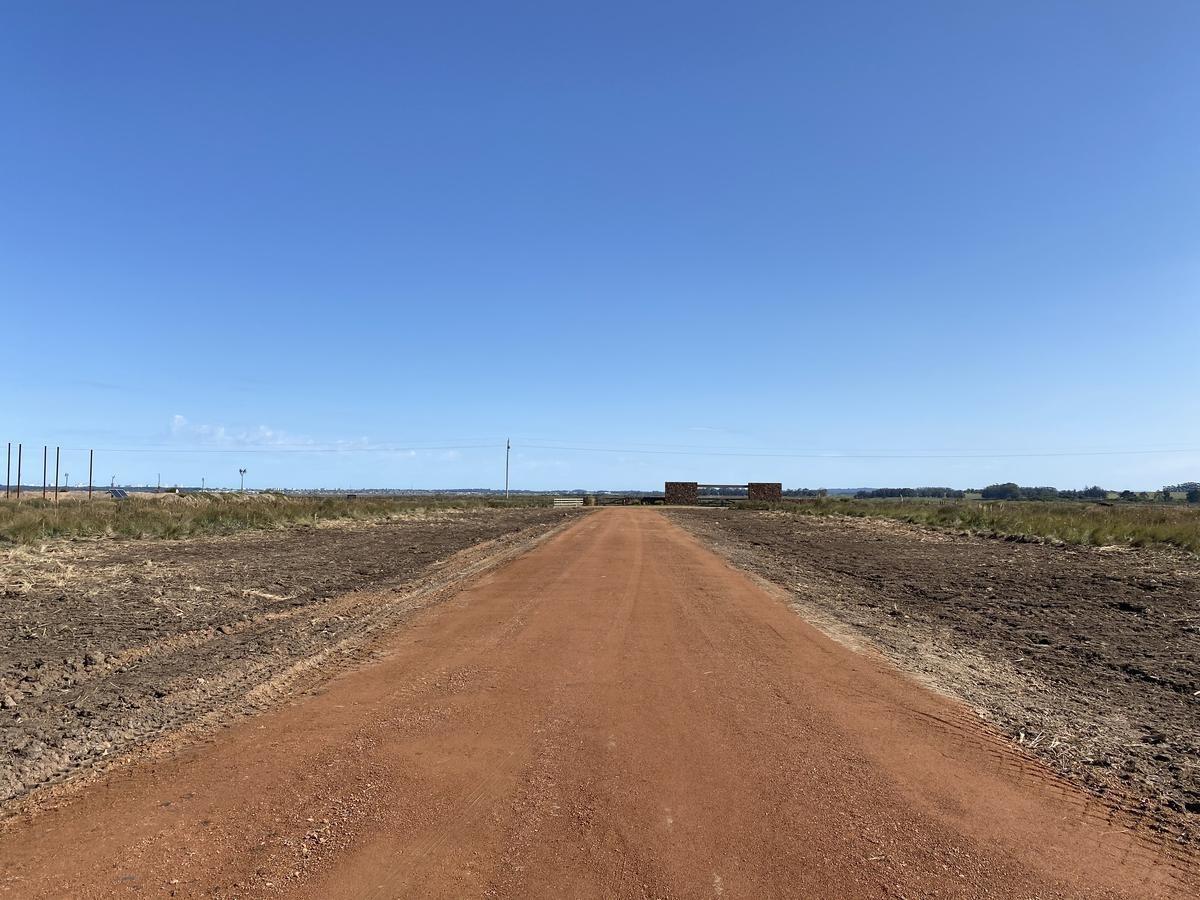 terreno - camino eguzquiza