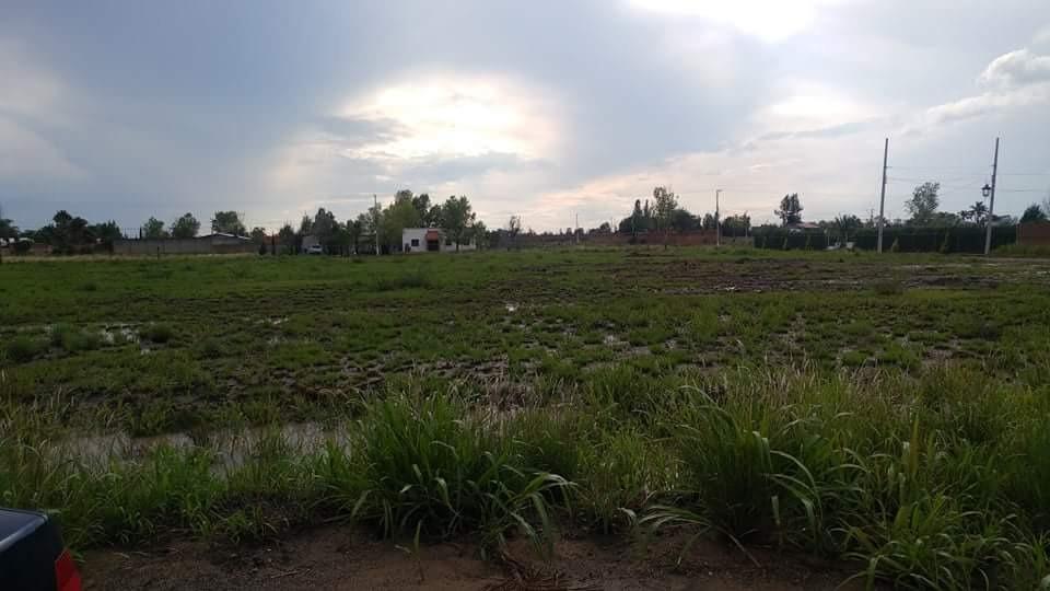 terreno campestre 1000m2 en antes de santa ana del conde