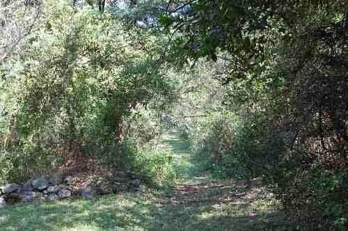 terreno campestre carretera nacional - el huajuquito