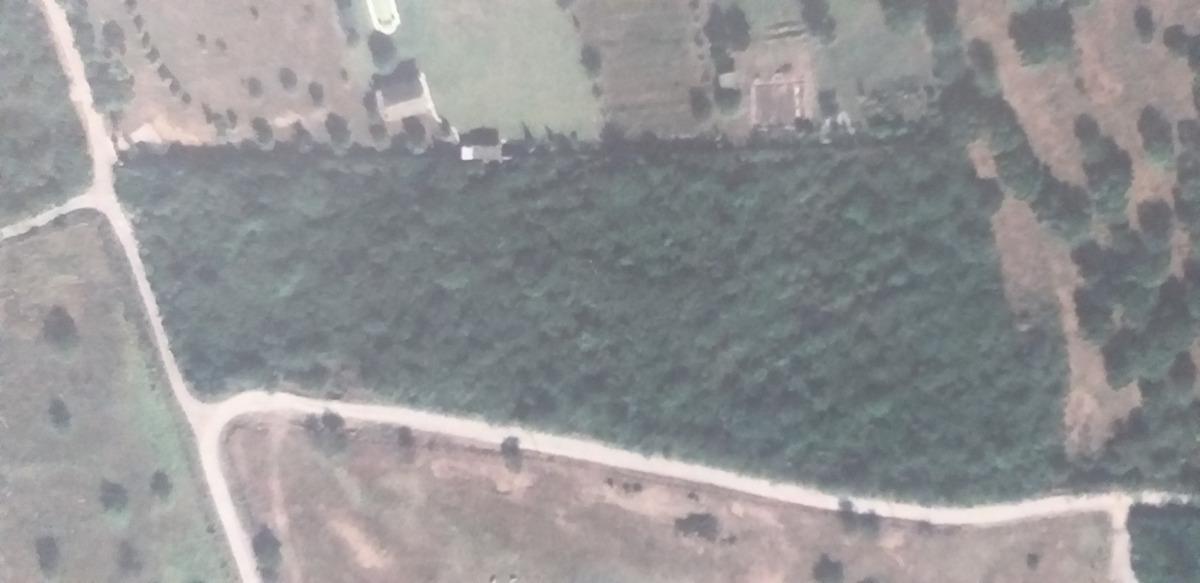 terreno campestre  de 2 hectareas en venta montemorelos, n.l