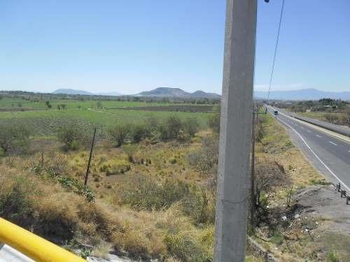 terreno campestre en alpuyeca / xochitepec - mrl-356-tc