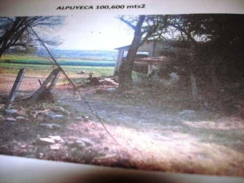 terreno campestre en alpuyeca / xochitepec - plu-315-tca*