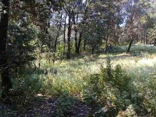 terreno campestre en huitzilac / huitzilac - grb-492-tca