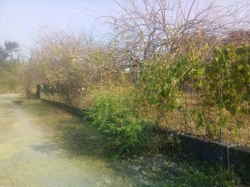 terreno campestre en imuri / jiutepec - grb-514-tca