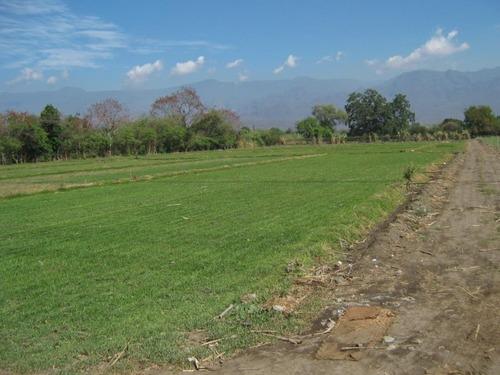 terreno campestre en oacalco / yautepec - cam-1371-tca