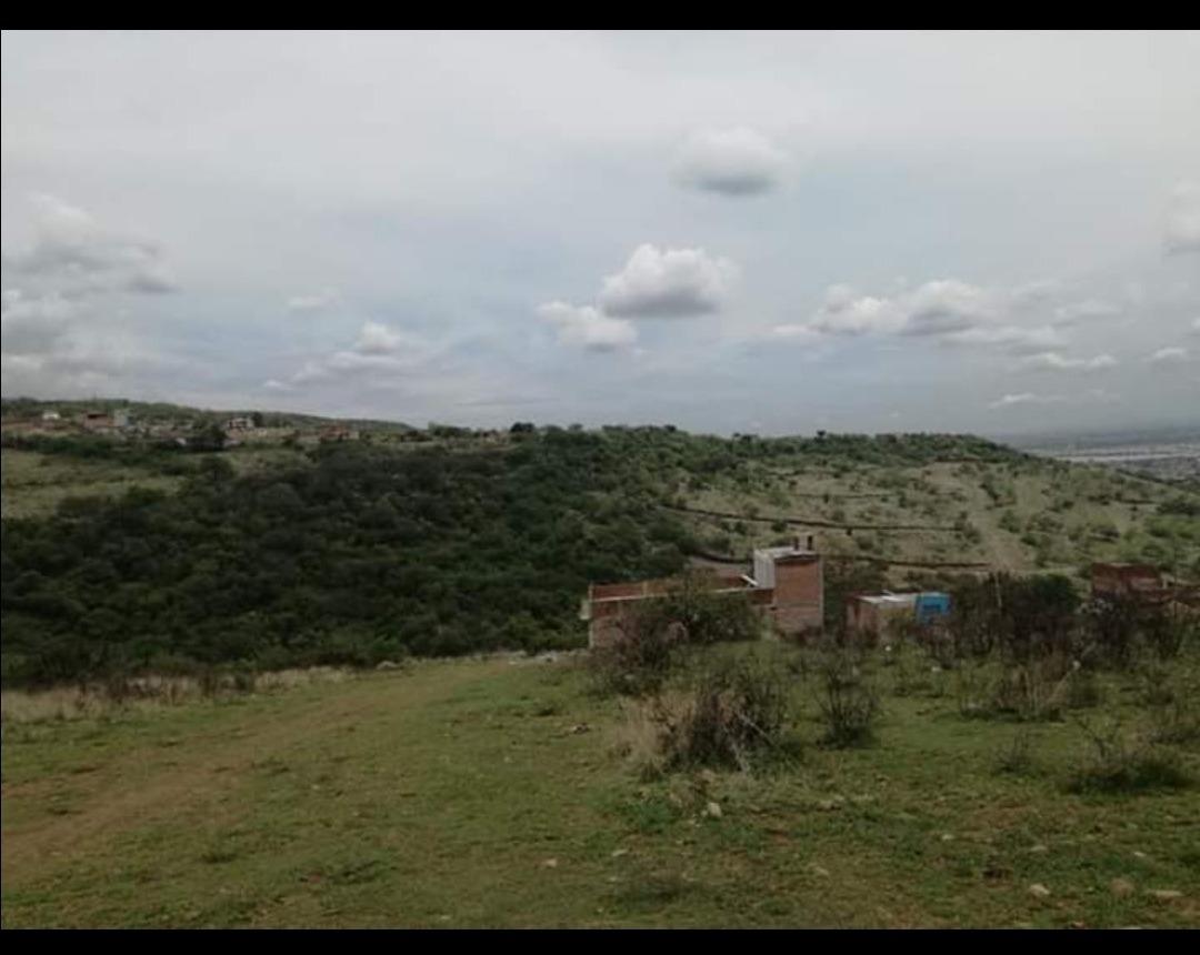 terreno campestre en rancho los naranjos