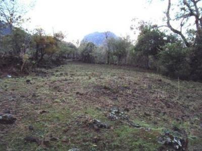 terreno campestre en santo domingo / tepoztlán - ims-327-tc