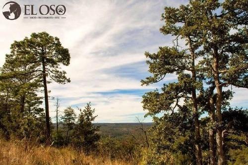 terreno campestre en venta rancho el oso