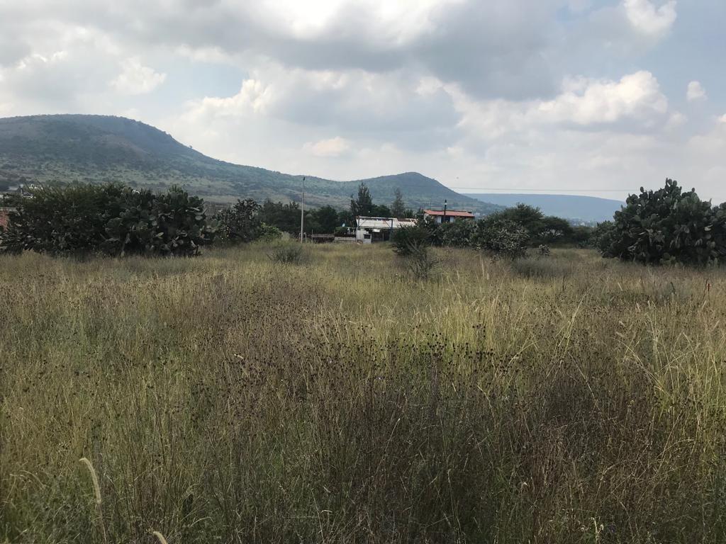 terreno campirano praderas del potrero