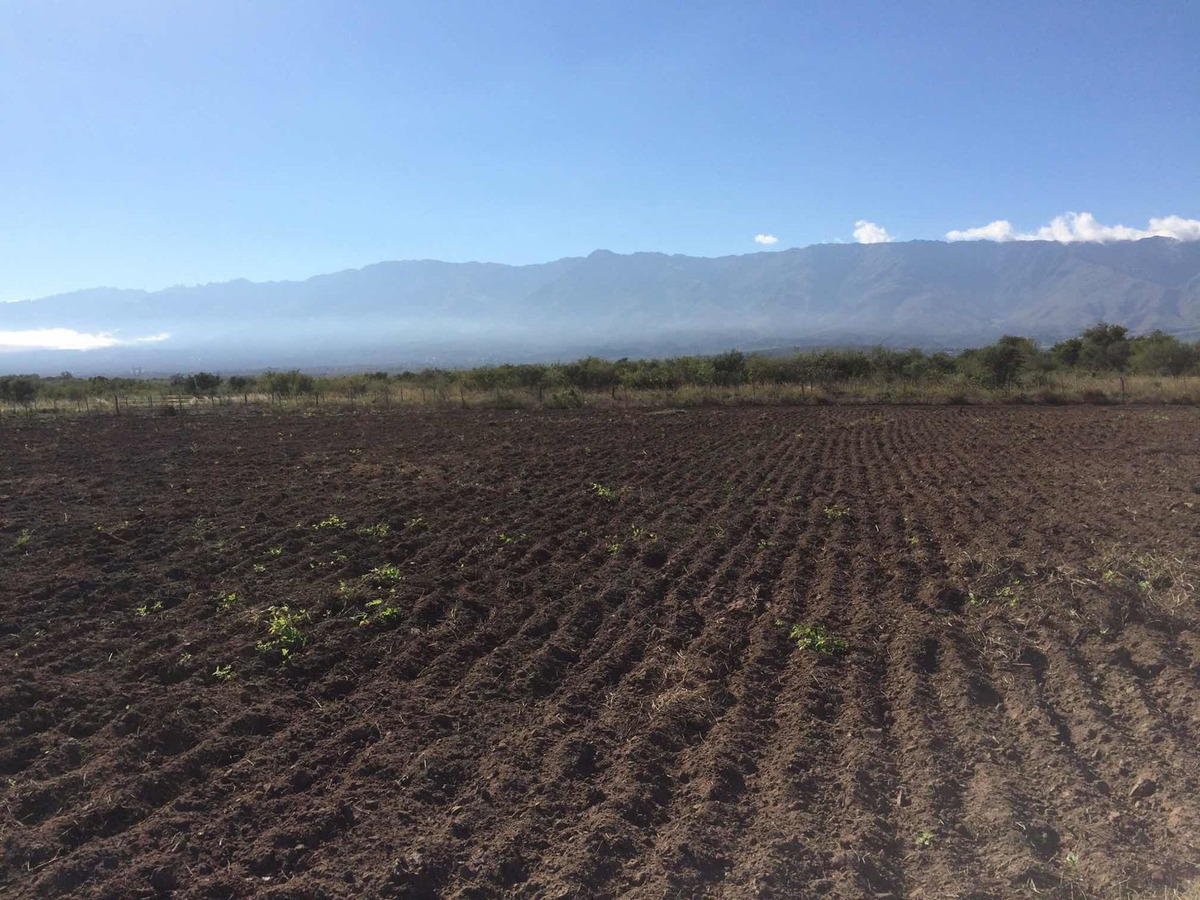 terreno campo en la población traslasierra 21 hectáreas