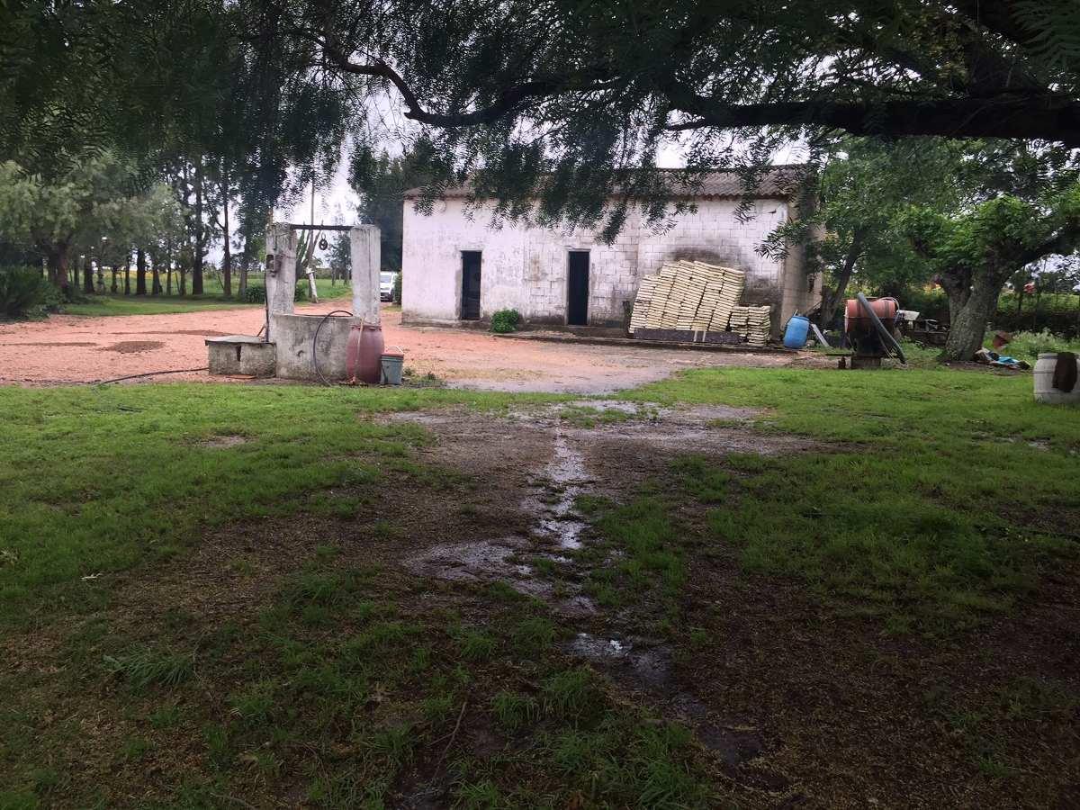 terreno- canelones- 9 has- logístico- las piedras