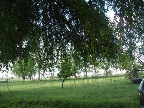 terreno - cañuelas