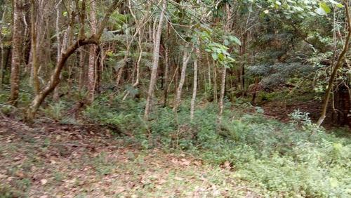 terreno - capuava - ref: 4961 - v-4961