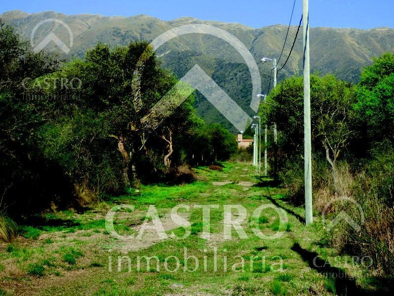 terreno - carpinteria
