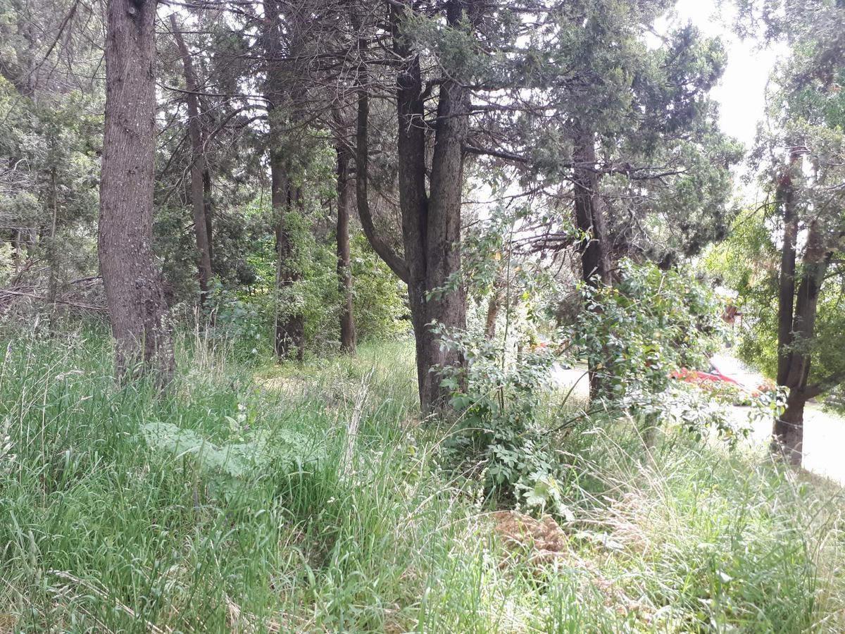 terreno - cerro runge