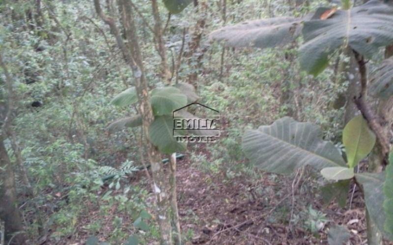 terreno champs prive- campo limpo paulista/sp