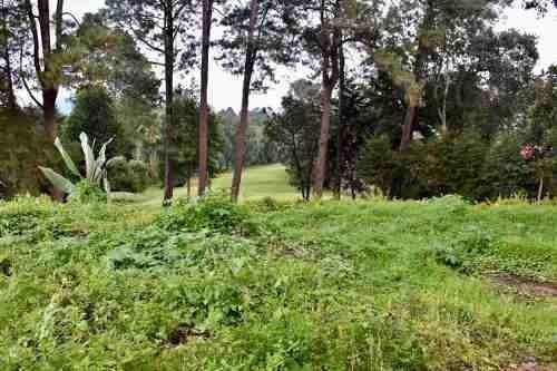 terreno club de golf avandaro