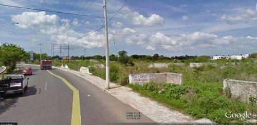 terreno col. maya