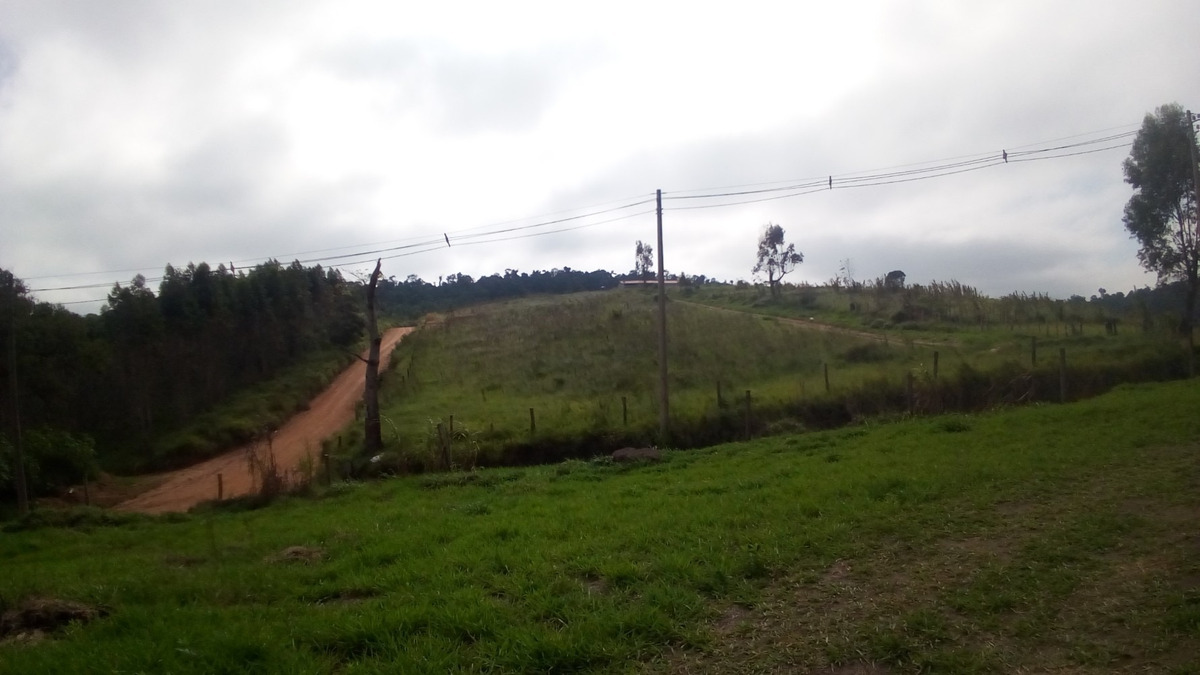 terreno com 1000 m²