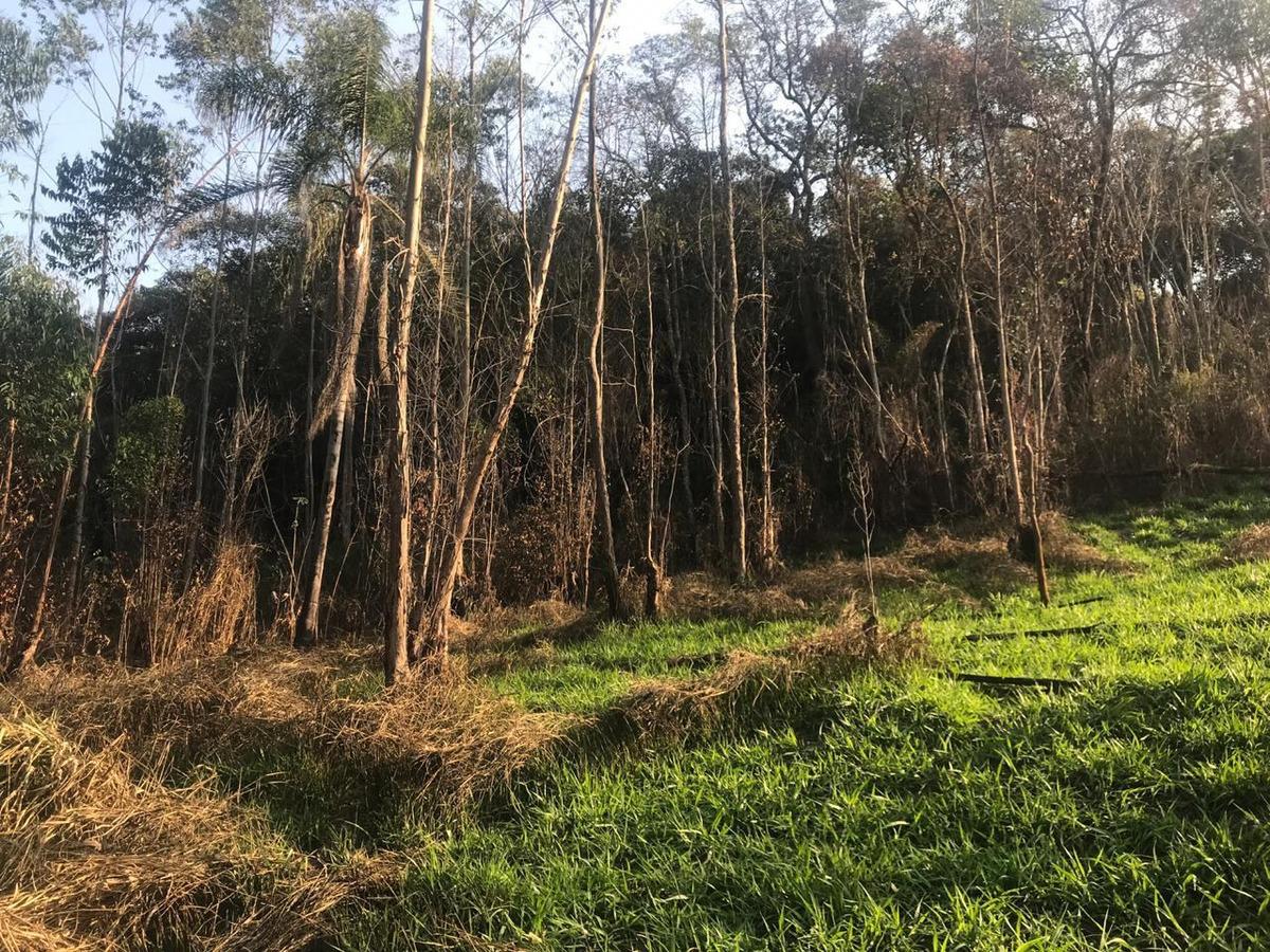 terreno com 10.000metros, localizado no melhor bairro rural.