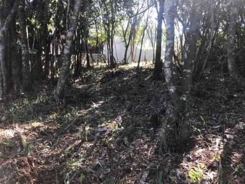 terreno com escritura em itanhaém - ref 4450-p