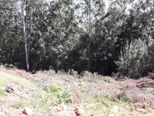 terreno com escritura à venda, 1079 m² por r$ 92.700 - zona rural - pinhalzinho/sp - te0210