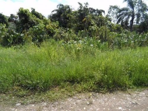 terreno com ótimo preço,no jardim palmeiras venham conferir