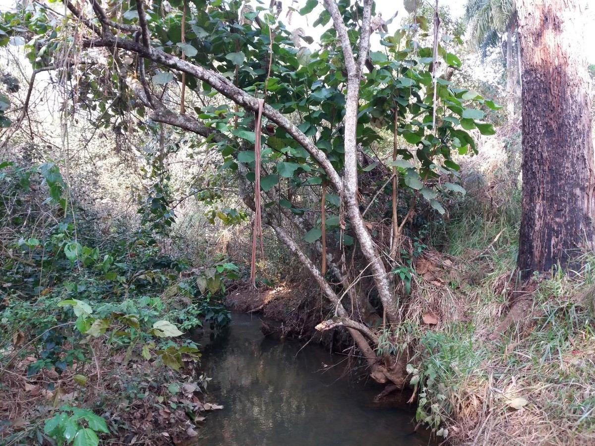 terreno com riacho - 2000m²