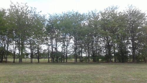 terreno comarcas de luján bº la elina lote 150
