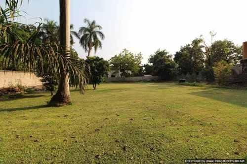 terreno comercial en el centro de xohitepec morelos clave tt844