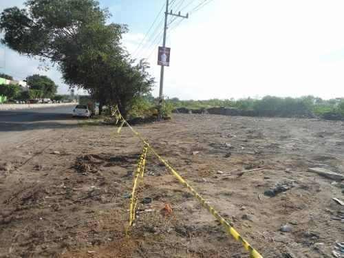 terreno comercial en ingenio tala, carretera guadalajara - t