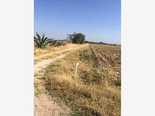 terreno comercial en venta ejido tequisquiapan