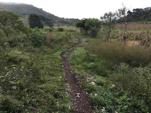 terreno comercial en venta gabriel esquinca